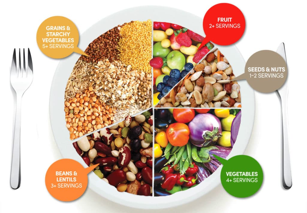 low carb vegan diet